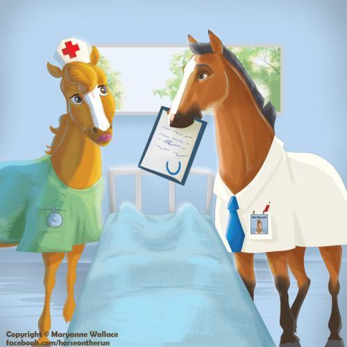 horsepital
