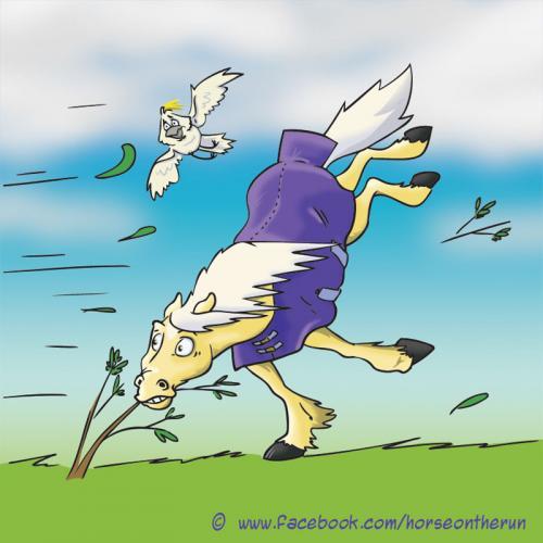 windy-facebook
