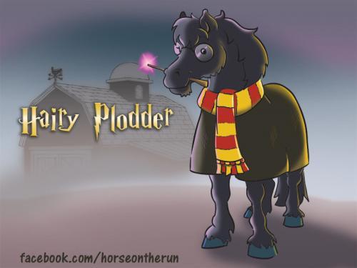 hairy-plodder