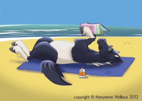 sunbathing-horse-Facebook